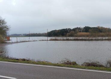 JARC exigirà a l'ACA la neteja urgent de les lleres dels rius