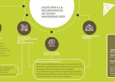 Ajuts per a la incorporació de joves i inversions 2020