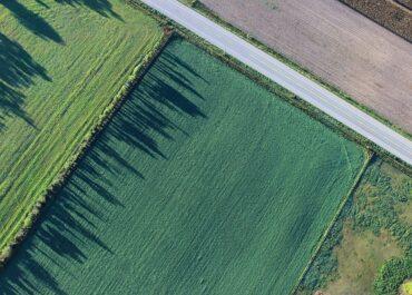 Informació actualitzada sobre els despalçaments a les explotacions agràries