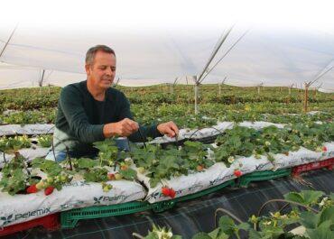 JARC planteja solucions per garantir la mà d'obra i la producció d'aliments amb mesures de seguretat
