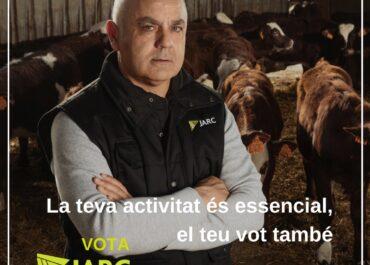 Reivindicacions de la sectorial del boví de carn