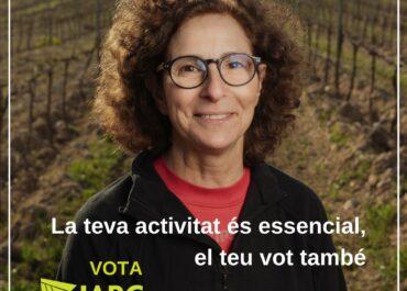 Reivindicacions de la sectorial de la vinya