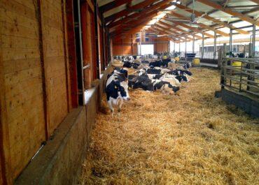 Proposem a Agricultura uns eco-esquemes més favorables per al conjunt del sector agrari